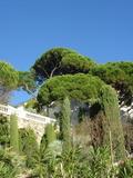 Rendez Vous aux Jardins 2018 -Visite découverte d'un jardin de rocailles, inscrit au titre des monuments historiques à Marseille