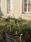 Rendez Vous aux Jardins 2018 -Visite-découverte d'un jardin romain