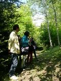 Rendez Vous aux Jardins 2018 -Visite-découverte de l'arboretum de Rieupeyroux