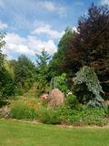 Rendez Vous aux Jardins 2018 -Visite découverte de l'Arboretum Les Feuilles Fleuries