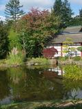 Rendez Vous aux Jardins 2018 -Visite découverte de l'Ile de Versailles