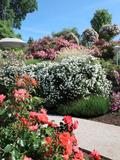 Rendez Vous aux Jardins 2018 -Visite découverte de la roseraie