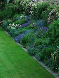 Rendez Vous aux Jardins 2018 -Visite libre des collections du jardin de La Bonne Maison.