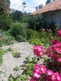 Rendez Vous aux Jardins 2018 -Visite découverte des jardins de l'Écomusée de Marquèze