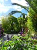 Rendez Vous aux Jardins 2018 -Visite découverte des Jardins de La Boirie