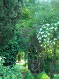 Rendez Vous aux Jardins 2018 -Visite découverte du château et des jardins du Fréchou