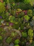 Rendez Vous aux Jardins 2018 -Visite découverte du Domaine de Boutiguéry et sa pépinière