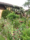 Rendez Vous aux Jardins 2018 -Visite découverte du jardin de Bentejac