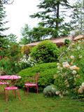 Rendez Vous aux Jardins 2018 -Visite découverte du jardin de Boissonna