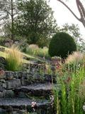Rendez Vous aux Jardins 2018 -Visite découverte du jardin de June