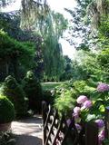Rendez Vous aux Jardins 2018 -Visite découverte du Jardin de Marlène à Barr