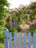 Rendez Vous aux Jardins 2018 -Visite découverte du jardin de Mireille