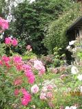 Rendez Vous aux Jardins 2018 -Visite découverte du Jardin des Têtards