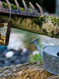 Rendez Vous aux Jardins 2018 -Visite découverte d'un jardin clos en plein coeur du village