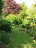 Rendez Vous aux Jardins 2018 -Visite libre et visite commentée du jardin « le clos de la Cornière »