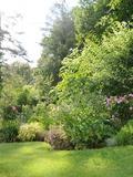 Rendez Vous aux Jardins 2018 -Visite découverte du jardin le paradis de la nature