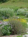 Rendez Vous aux Jardins 2018 -Visite découverte du jardin pédagogique de plantes médicinales et à usages