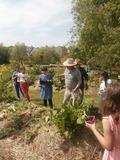Rendez Vous aux Jardins 2018 -Visite découverte du Jardin pédagogique Des Lilas de Châteaubriant