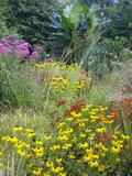 Rendez Vous aux Jardins 2018 -Visite découverte du jardin secret du Beugnon