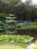Rendez Vous aux Jardins 2018 -Visite découverte du Parc botanique de Cornouaille