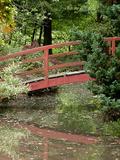 Rendez Vous aux Jardins 2018 -Visite libre du parc botanique de la Teyssonniere