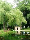 Rendez Vous aux Jardins 2018 -Visite Découverte du Parc Simon