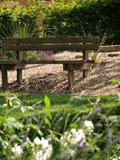 Rendez Vous aux Jardins 2018 -Visite découverte du parc