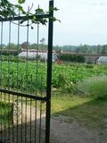 Rendez Vous aux Jardins 2018 -Visite découverte du potager de Chambray en cours de restauration