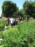 Rendez Vous aux Jardins 2018 -Spectacle- visite des jardins du château de Martainville au ton décalé