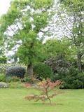 Rendez Vous aux Jardins 2018 -Visite des jardins de l'Ouche