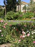 Rendez Vous aux Jardins 2018 -Visite libre des jardins de la Collectivité de Corse