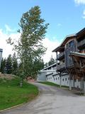 Journées du patrimoine 2016 -Visite du Centre national de ski nordique et de moyenne montagne (CNSNMM) à Prémanon