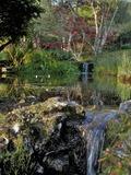 Rendez Vous aux Jardins 2018 -Visite du jardin aquatique Acorus labellisé