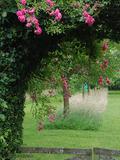 Rendez Vous aux Jardins 2018 -Visite du jardin avec dégustation  maison variées