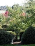 Rendez Vous aux Jardins 2018 -Visite du jardin botanique d'Alkinoos