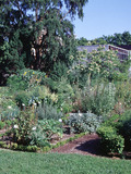 Journées du patrimoine 2016 -Visite commentée du jardin botanique de l'École nationale vétérinaire d'Alfort