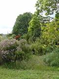 Rendez Vous aux Jardins 2018 -Visite du jardin d'essai et d'acclimatation du Jardin de Rochevieille