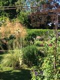 Rendez Vous aux Jardins 2018 -Visite libre du jardin de l'ancienne école de Guiseniers