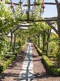 Rendez Vous aux Jardins 2018 -Visite du jardin de la Basse Fontaine