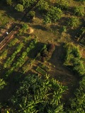 Rendez Vous aux Jardins 2018 -Jardin de La Santé