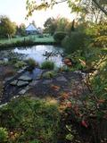Rendez Vous aux Jardins 2018 -Visite du jardin de Marike