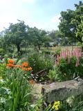 Rendez Vous aux Jardins 2018 -Visite commentée par la propriétaire