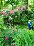 Rendez Vous aux Jardins 2018 -Visite du jardin de Méli-Mélo