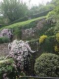 Rendez Vous aux Jardins 2018 -Visite du jardin des Clématites