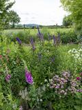 Rendez Vous aux Jardins 2018 -Visite du jardin des Joëts