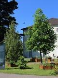 Rendez Vous aux Jardins 2018 -Visite commentée du jardin Dominique Villars