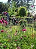 Rendez Vous aux Jardins 2018 -Visite du Jardin du Lièvre
