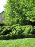 Rendez Vous aux Jardins 2018 -Visite du jardin du presbytère de Cirfontaines en Azois