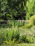 Rendez Vous aux Jardins 2018 -Visite du jardin Dupré la Tour.