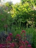 Rendez Vous aux Jardins 2018 -Visite du jardin ludique de Patrick et Roland